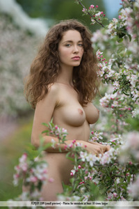 Vika A In Apple Blossom