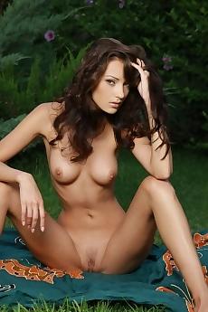 Anna AJ Drosia